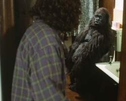 Jonathan finds Samson the gorilla on the loo